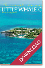 Little Whale Cay - Caribbean Sea - brochure